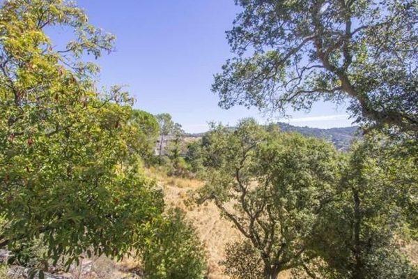 137 None Jordan Avenue None None, San Anselmo, CA 94960 -  $867,000