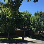 301 Jacaranda Dr, Danville, CA 94506 -  $999,000