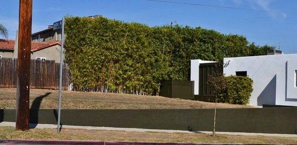 5841 Airdrome St, Los Angeles, CA 90019 -  $987,500