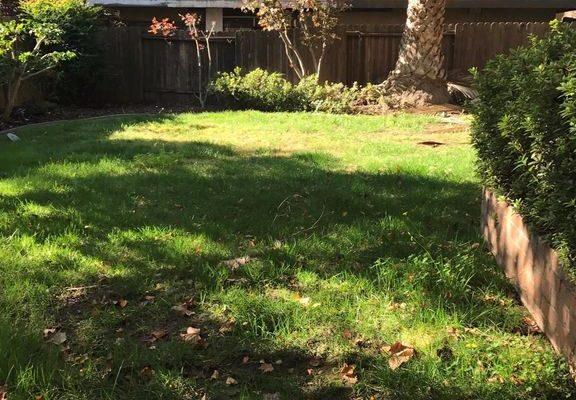 3232 H St, Sacramento, CA 95816 -  $1,000,050
