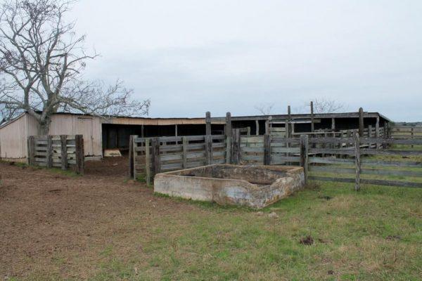 0 Ashorn Ln, Sealy, TX 77474 -  $1,244,880