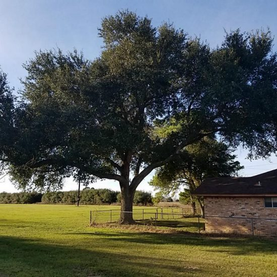 13910 Fm 359 Rd, Hempstead, TX 77445 -  $1,188,461